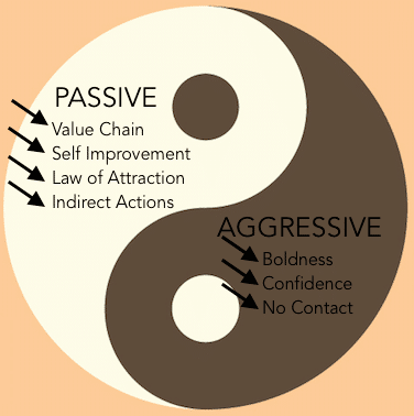 yin and yang game plan